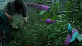 Inure Takehashi playing a snare drum among buddleia