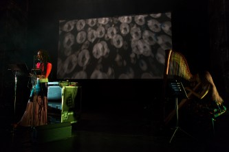 Two people on stage with patterned lights on a screen. One is playing the harp