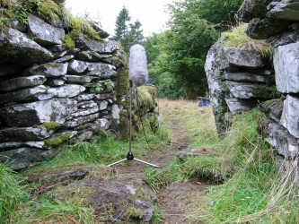 A microphone recording amidst an overgrown and ancient broch