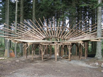 A wooden structure in the woods