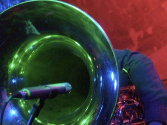 Robin's tuba bell obscures his face