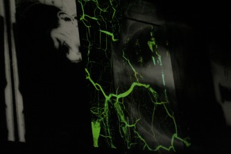 fungal lines of green creep across a black and white projection