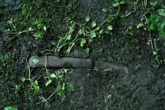 A pocket knife embedded in some mud near what looks like watercress