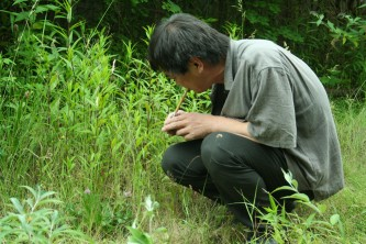 Ikuru Takehashi crouching down near some grass blowing a bamboo whistle