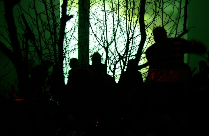 Thuja performing among tree branches at DCA Dundee