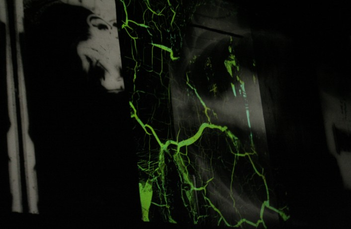 Projected images of black and white textures and green forms on a screen