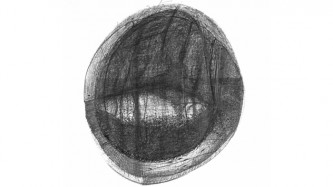 A drawing of a circular shape made in graphic pencil