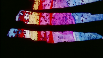 Three slashes of colour in a black film frame, blues, pinks, reds