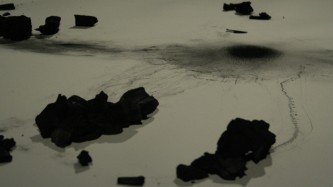 Pieces of coal on a sheet of white paper